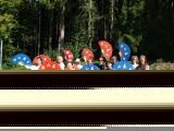 2008 Sommerakademie-089