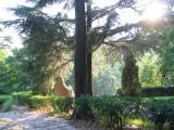 2004 Laoshan Zentrum China 01