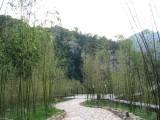 2004 Laoshan Zentrum China 07