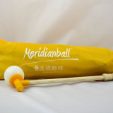 Meridianball_yellow_bag2