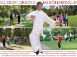 Gehende-QiGong-Übung zur Förderung und Stärkung der Abwehrkräfte/des Immunsystems im Wald @ Dreiburgensee